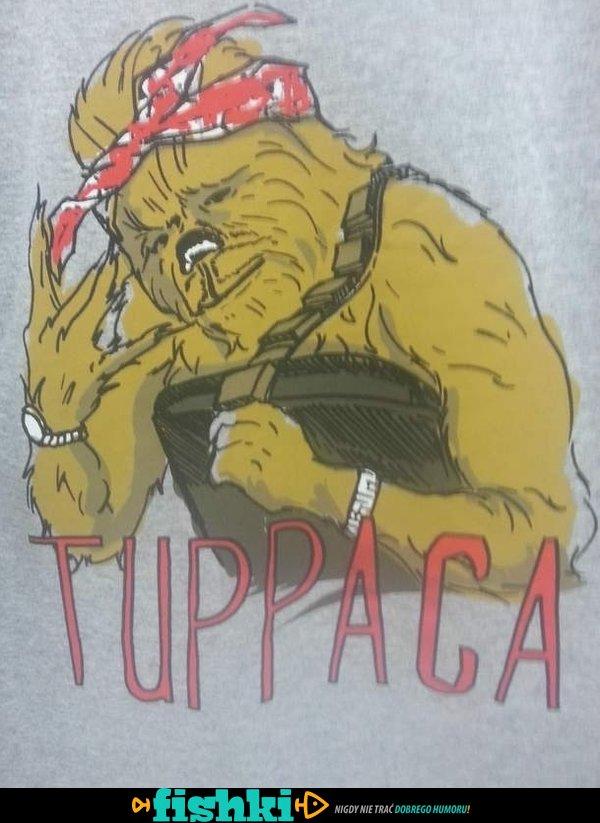Tuppaca