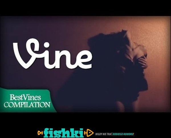 BEST VINES of January 2014 Compilation!! - Week #3