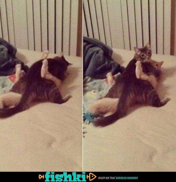 To nie tak jak myślisz kotku