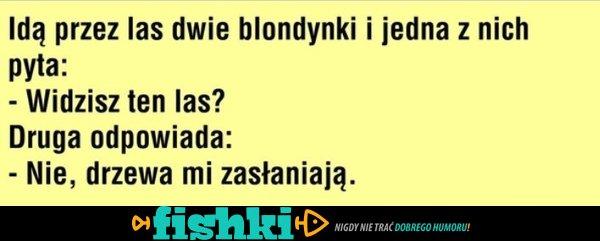 Dowcipy o blondynkach - zdjęcie 12