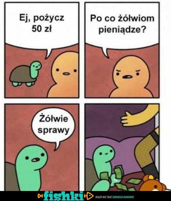 Pożycz 50 zł