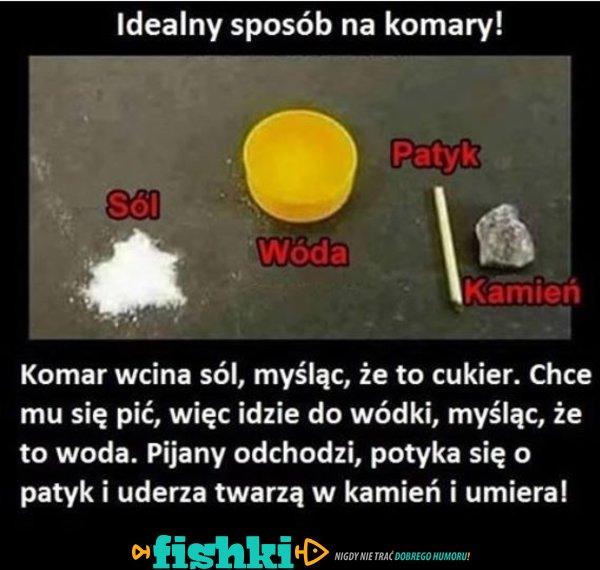 Idealny sposób na komary