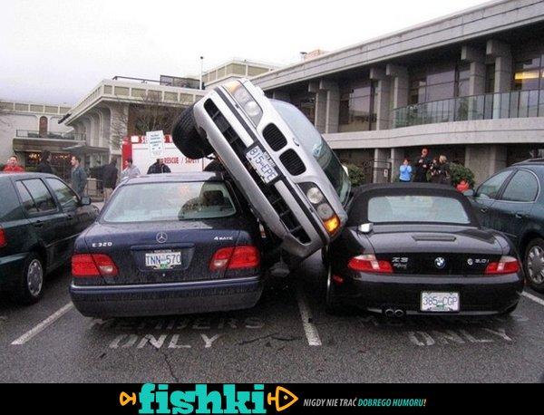 Mistrzowie za kierownicą - zdjęcie 1
