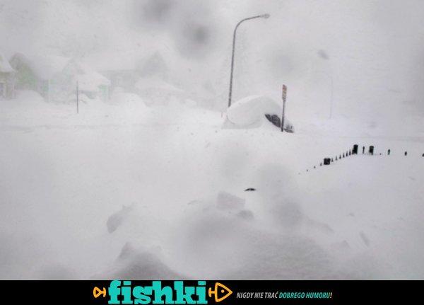 Śnieżyce w USA