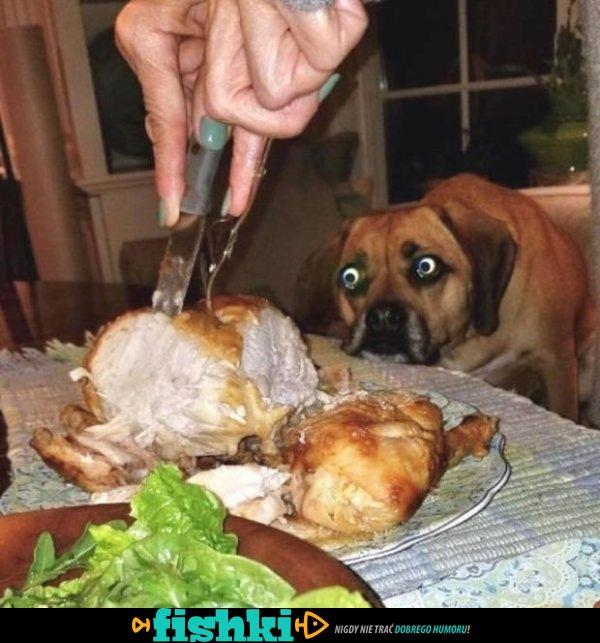 Chcą bardzo to zjeść!