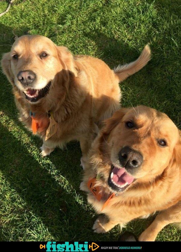 Najlepsi przyjaciele - zdjęcie 5