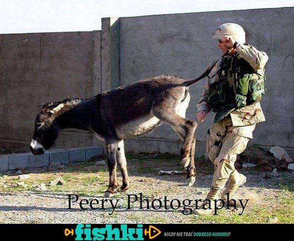 Zabawne zdjęcia z wojska - zdjęcie 1