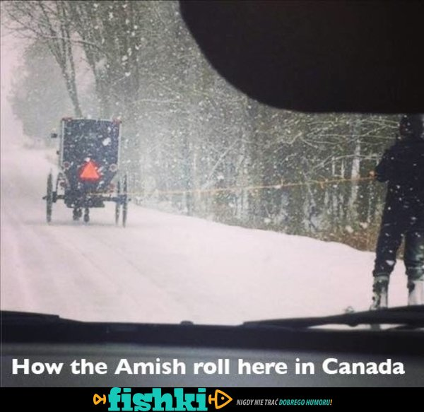 Pewnego razu w Kanadzie - zdjęcie 6