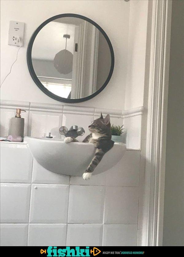 Kiedy masz kota... - zdjęcie 27