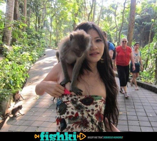 Zoo potrafi zaskoczyć - zdjęcie 1