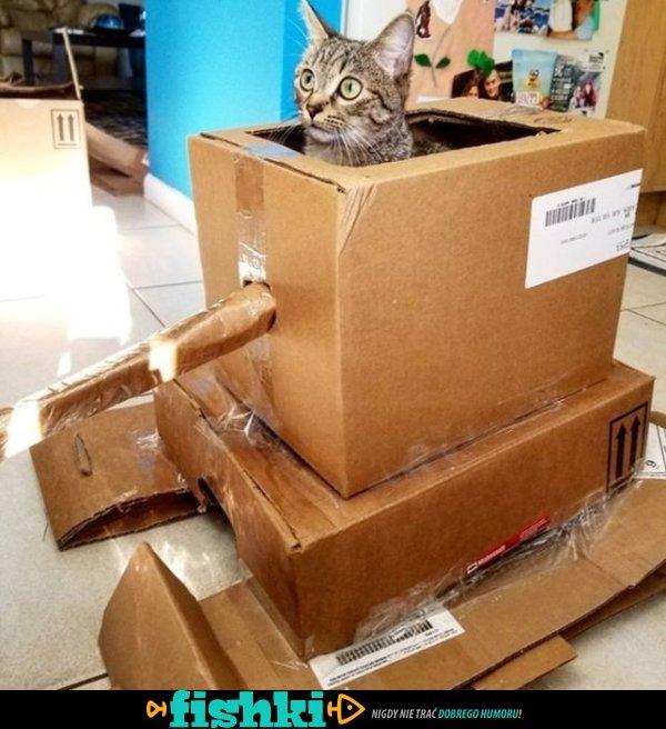 Koty dowodzące czołgami z kartonu