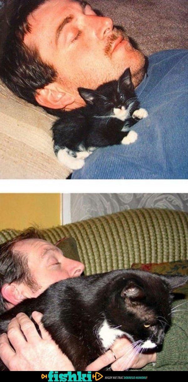 Kiedy kotki dorastają - zdjęcie 1