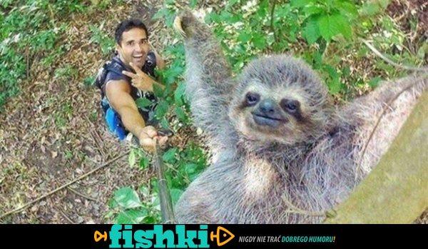 Selfie ze zwierzakami - zdjęcie 1
