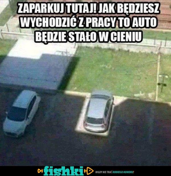 Zaparkuj tutaj!