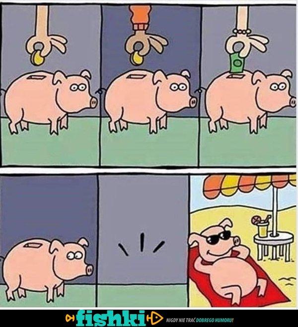 Świnka skarbonka