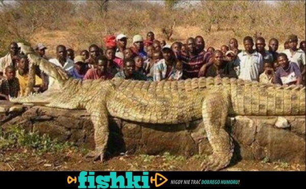 Pewnego razu w Afryce - zdjęcie 6