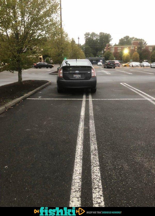 Mistrzowie parkowania - zdjęcie 31