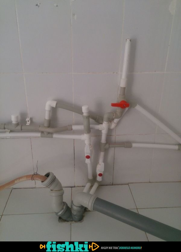 Janusze hydraulicy