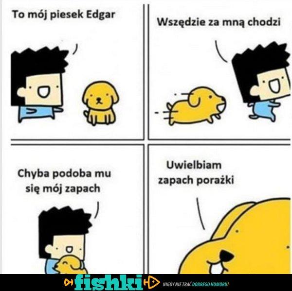 Mój piesek Edgar