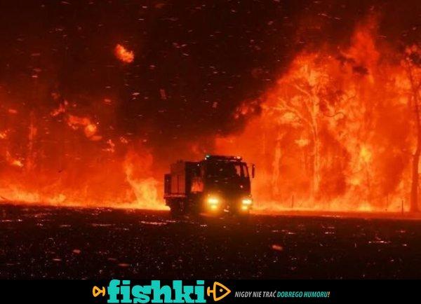 Zdjęcia przedstawiające Australię w ogniu - zdjęcie 1