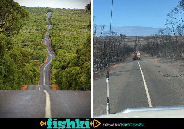 Australia przed i po - porównanie zdjęć zrobionych przed przejściem pożarów