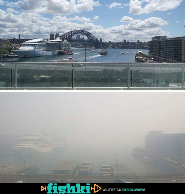 Australia przed i po - porównanie zdjęć zrobionych przed przejściem pożarów - zdjęcie 20