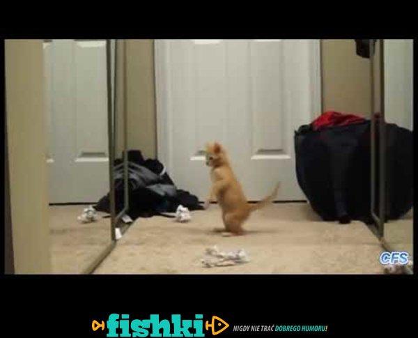 Pierwszy raz widzą się w lustrze