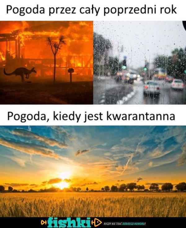 Taka jest pogoda