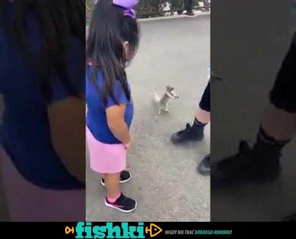 Wiewióreczka błagała o picie