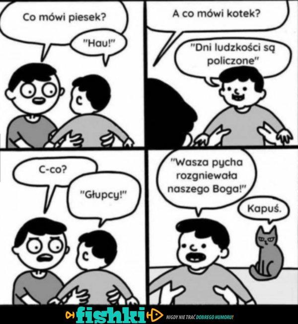Co mówi piesek?